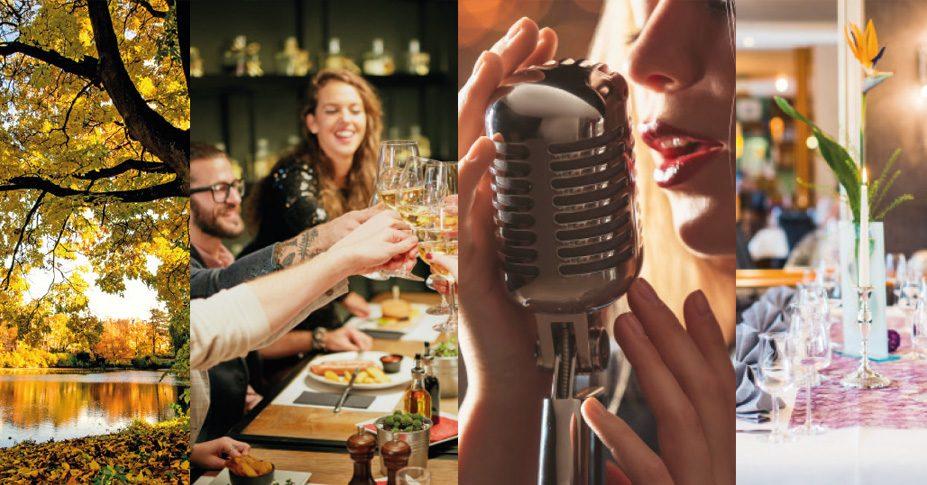 The Taste Of Music am 12. & 13. November